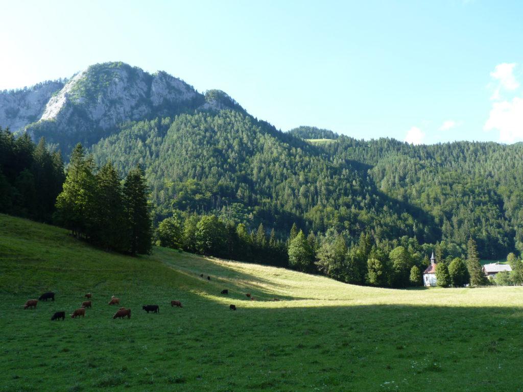 Campagne Slovénie