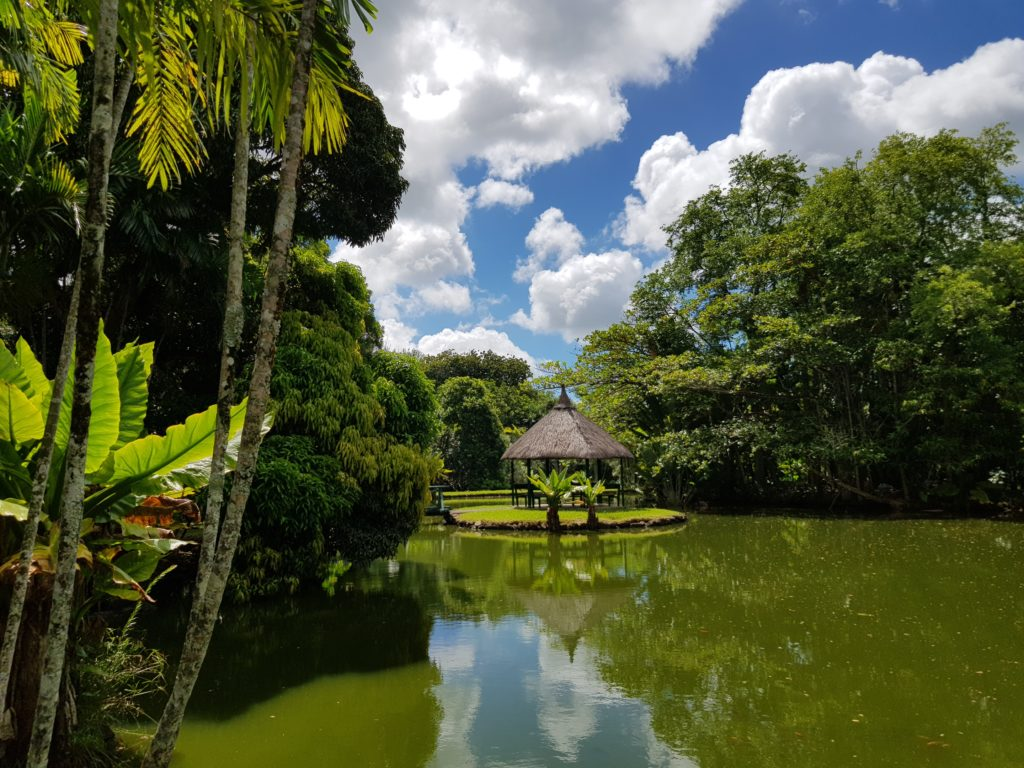 Jardin Botanique Maurice