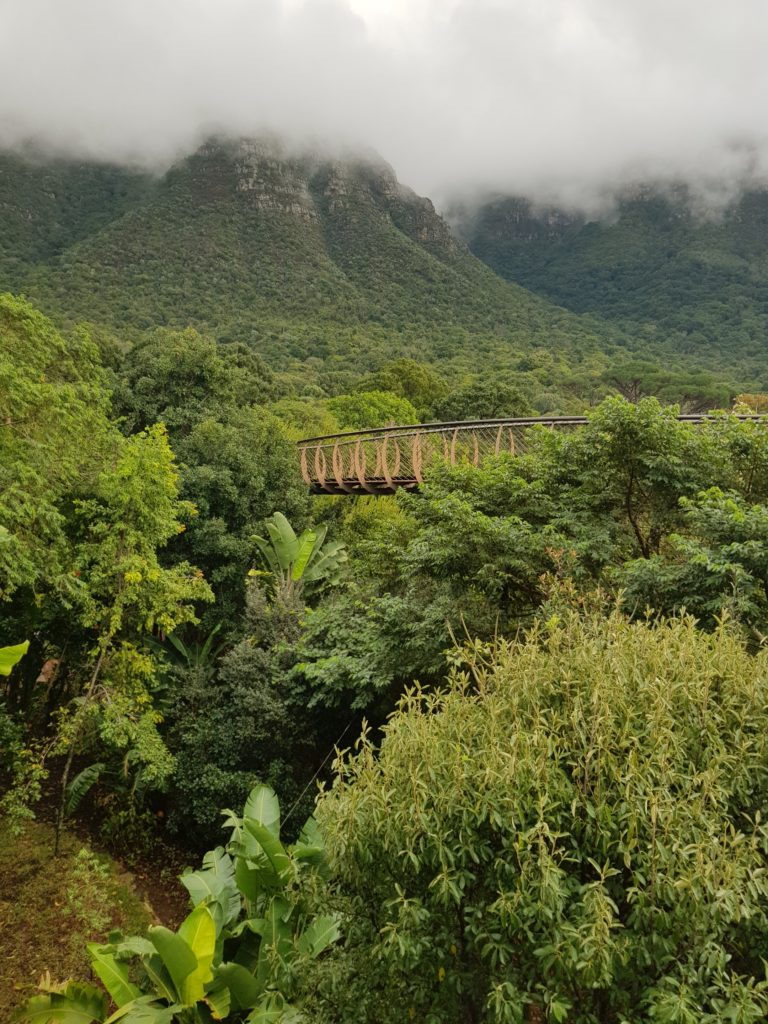 Jardin Botanique Cape Town